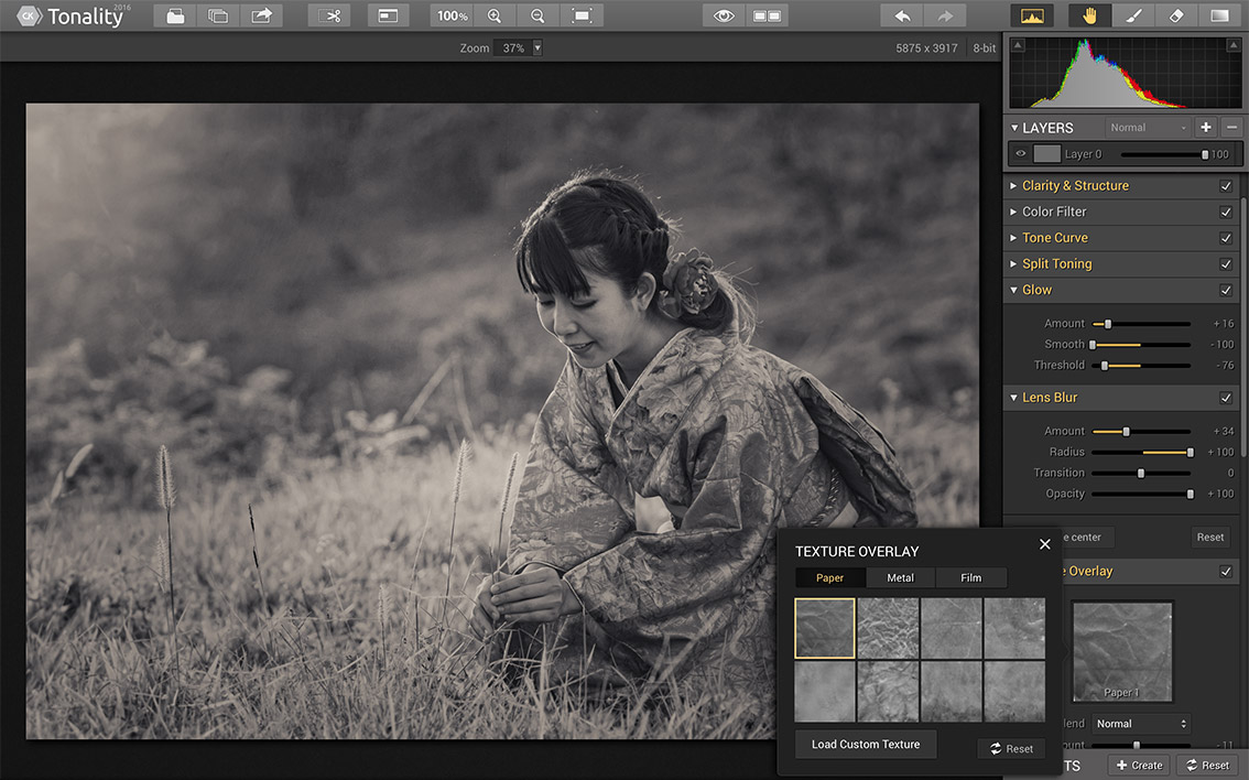 Photo Editing Software for Mac by Macphun   tonality